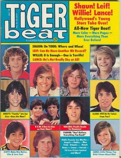 Tiger Beat (1978) Leif Garrett, Shaun Cassidy, Bay City Rollers, Kristy McNichol. My bedroom wall was covered with Leif Garrett when I was in 8th grade!