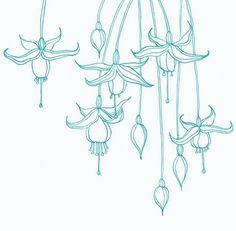 line drawing flowers dahlia