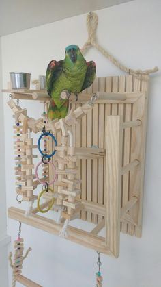 playground wall for parrot bird charm toys - Garden Ideas Diy Parrot Toys, Diy Bird Toys, Parrot Perch Diy, Homemade Bird Toys, Parrot Play Stand, Diy Bird Cage, Bird Stand, African Grey Parrot, Bird Aviary