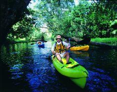 Practica ecoturismo en diferentes lugares, conócelos en: http://mipagina.1001consejos.com/profiles/blogs/7-lugares-de-aventura-para