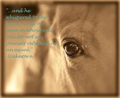 """...and he whispered to the horse, trust no man in whose eyes you do not see yourself reflected as an equal."" ~Unknown"