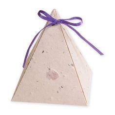 Plantable Pyramid Favor Box - PERFECT!!!