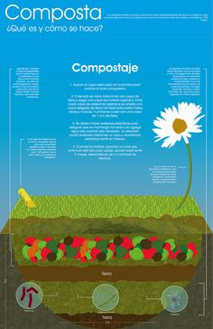 Infografía sobre la composta. by Ray the Bear!, via Flickr