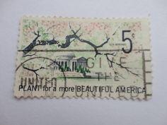 Plant 5c Old 1966-67 U.S. Postage Stamp.