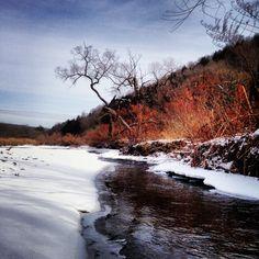 Winter's Grasp