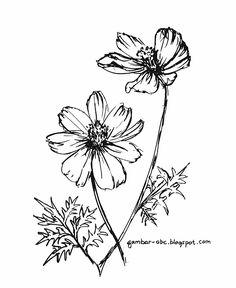 Mewarnai Gambar Bunga Kenikir
