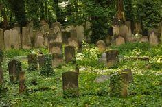 Old Graveyard Berlin Graveyard Girl, Old Cemeteries, Memorial Stones, Cemetery Art, Danse Macabre, Scenery, Nature, Painting, Grave Markers