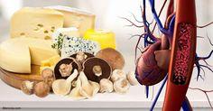 Las poliaminas tienen una potente actividad anti-inflamatoria, protegen el ADN contra el daño de los radicales libres y se han relacionado con la longevidad.