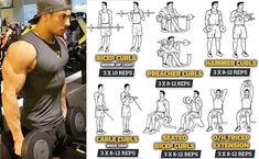 huge biceps exercises