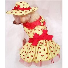 Cherry Surprise harness Set Dog harness Dog dress dog clothes xs s m l