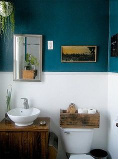 "Pop of deep color on the wall.  Look at the owl sitting in the rustic ""tp"" box."