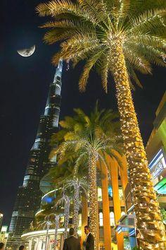 Fotó  Dubai night