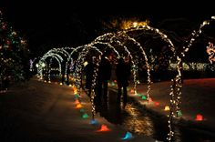 Garden Of Lights Green Bay Wi Amusing 11 Christmas Light Displays In Wisconsin That Are Pure Magic Decorating Inspiration