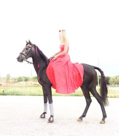 Gray horse red dress