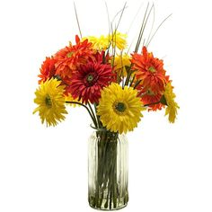 Yellow Orange Gerber Daisies in Tall Ridged Glass Vase (2.129.685 IDR) ❤ liked on Polyvore featuring home, home decor, flowers, home accessories, orange home accessories, yellow home accessories, gerber, orange home decor and yellow home decor