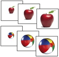 Free Printable Printable Montessori Materials   Montessori Print Shop