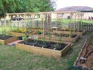 Great garden setup.