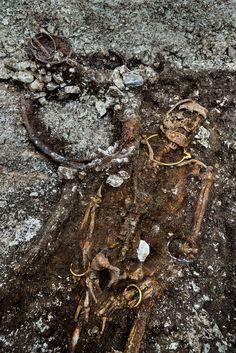 Une sépulture exceptionnelle du Ve siècle avant J.C. , dont la dépouille reposait avec un char à 2 roues, exhumée à Lavau (Aube) France. Elle était occupée par un prince ou une princesse dont les parures témoignent du rang : un mobilier funéraire de bronze méditerranéen, des perles d'ambre, un bracelet d'or et un torque d'or massif de plus de 500 gr, décoré d'un double monstre ailé. Denis Gliksman / © Denis Gliksman, Inrap