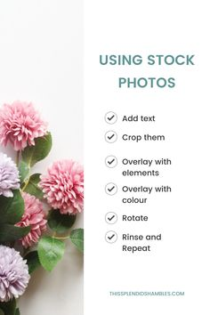 Top tip for using Stock Images for your blog, social media or business! Add text. Crop them, overlay with elements. overlay with colour. Rotate. Rinse and Repeat. #bloggingtips #bloggingforbeginners #stockphotos