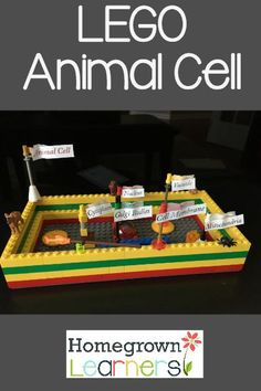 Make a plant cell out of LEGOs, because the base plate is already the correct shape! Plant Cell Project, Cell Model Project, Cell Project Ideas, 3d Animal Cell Project, Science Cells, Plant Science, Lego Animals, Animals For Kids, 3d Cell Model