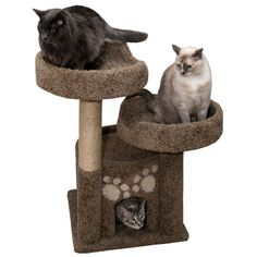 Wood Cat Condo Cat Furniture Kitty Condo, Brown Carpet * Special cat product just for you. Small Cat Tree, Tree Furniture, Furniture Ideas, Wood Cat, Cat Towers, Brown Carpet, Cat Condo, Unique Cats, Cat Accessories