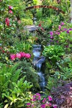 Garden stream late spring