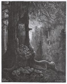 The Mice and the Owl. From Doré's illustrations for the Fables of La Fontaine.