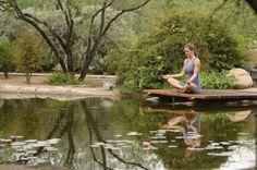 Canyon Ranch | Visit Arizona Destin Resorts, Visit Arizona, Meditation Garden, Tucson, Outdoor Pool, Indoor Garden, Garden Bridge, Trip Advisor, Ranch