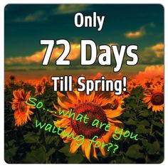 It is time to start now! Spring is around the corner! Let me help you wrap skinny! Follow me at www.Facebook.com/louAnnwrapsyouskinny #Wrap it #LouannWrapsyouskinny #Springvacatio 2015