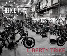 A storm is coming. And it's name is Liberty. E Bike Kit, Electric Tricycle, Liberty, Monster Trucks, Bicycle, Boat, Vehicles, Cycling, Spring