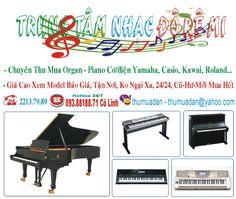 Thu mua đàn Piano, Organ: Mua đàn Organ - Piano Giáo Cao