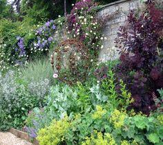 The Cottage Garden - 3