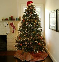 Christmas Tree on a Dime With trying economic times, you may be tempted to forego the tree this Christmas. Check out three inspiring, penny...
