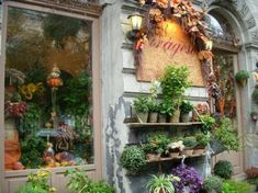 Florist shop Beautiful Gardens, Beautiful Flowers, Shop Fronts, Garden Shop, Bouquet, Shop Interiors, Indoor Plants, Deco, Flower Power