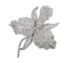 Orchid clip. Platinum, diamonds. 1927. Van Cleef & Arpels Collection. Patrick Gries © Van Cleef & Arpels