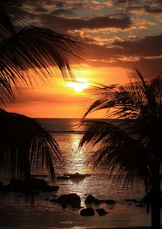 ☀ Tropical Sunset | Mauritius ☀ MY FAVORITE!!! (http://www.facebook.com/BeautyOfMauritius)