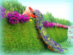 #iloveflowers #dubaimiraclegarden