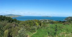 Build your dream home here! Open2view ID#324947 (65 The Track) - Section for sale by Tender in Plimmerton, New Zealand - Phone Andy Cooling on 0800 468738
