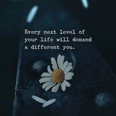 Best Positive Quotes : Every next level of your life. Funny Inspirational Quotes, Motivational Words, True Quotes, Words Quotes, Qoutes, Sayings, Reality Quotes, Success Quotes, Favorite Quotes
