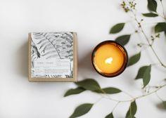 Fern + Moss Amber Glass Candle