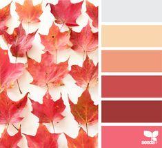 Fallen Hues - https://www.design-seeds.com/autumn/fallen-hues