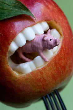 Une pomme avec des dents mangeant un cochon :