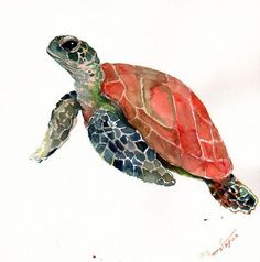 Sea Turtle, Original watercolor painting, 12 X 12 in, Olive green, Indigo, red animal art, sea animal illustration, watercolor animals: