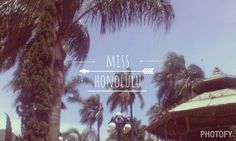 Miss Honolulu, Miss Honolulu  <<Carlos Sadness>>