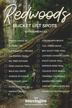Redwood National & State Parks Bucket List