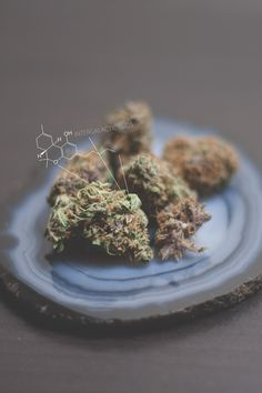 intergalacticbuds:  Frosty