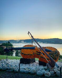 """Die Kürbisfigur """"Violine"""" erstrahlt heute Morgen im herrlichen Herbstsonnaufgang. Outdoor Furniture, Outdoor Decor, Mountains, Nature, Travel, Today Morning, Sunrise, Sculptures, Autumn"""