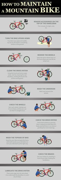 Infographic | How to Maintain a Mountain Bike in 10 Easy Steps - Mountain Bikes Guide