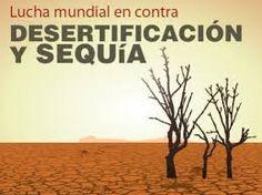 17 de junio de 2015: Día Mundial de la lucha contra la Desertificación y Sequía