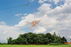 ADAM KALINOWSKI, THE SKY REACHING HAMMOCK on ArtStack #adam-kalinowski #art